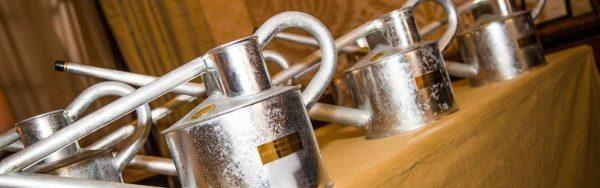 galvanizing awards