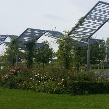 sustainable galvanizing